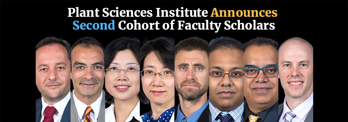 Second Cohort Faculty Scholars